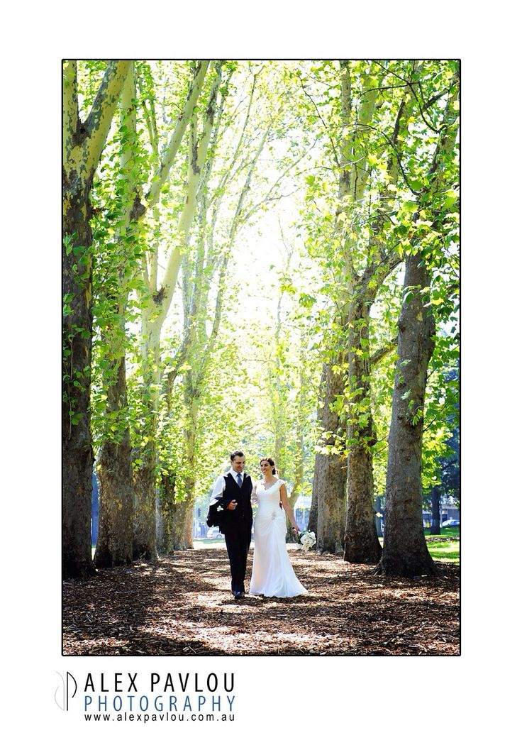 Melbourne tree line..... Melbourne wedding photography by Con Tsioukis of Alex Pavlou Photography