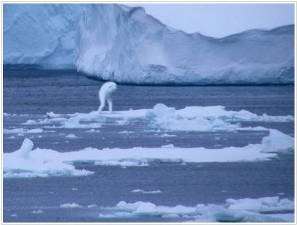 Oceano: Um mundo oculto! Cientistas se espantam ao descobrir criatura humanoide no mar do Japão ~ Sempre Questione - Últimas noticias, Ufologia, Nova Ordem Mundial, Ciência, Religião e mais.