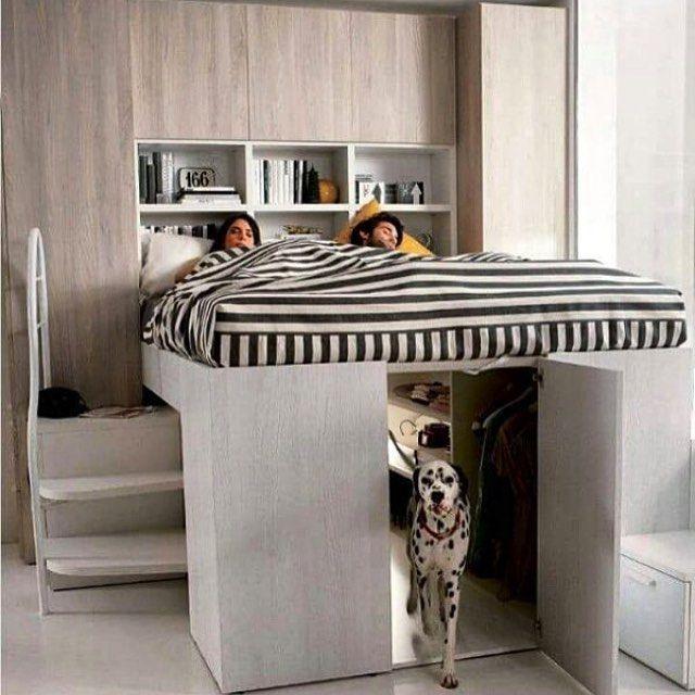 Cool! for the pet lovers! || Eu quero uma dessas pra dormir com o @charlesbulldog ❤️