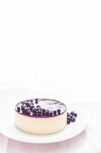 White chocolate mousse cake with black currants//