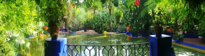 Jardin de Majorelle | حديقة ماجوريل in مراكش, Marrakech-Tensift-Al Haouz