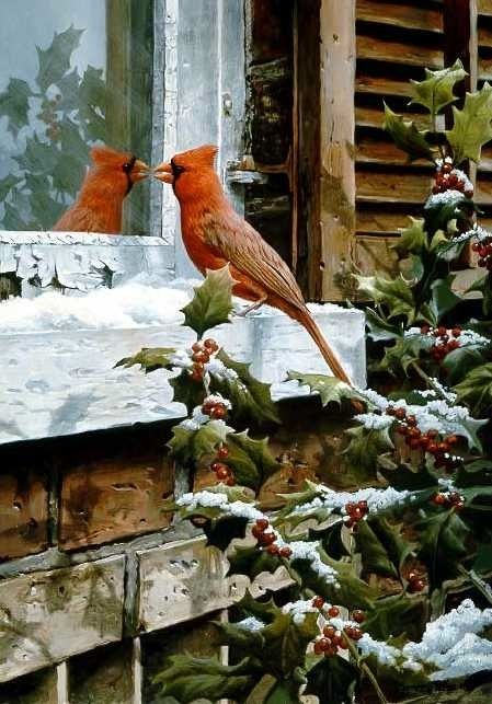 Redbird sees himself. We once had a bluebird who fought often with the image he saw of himself.