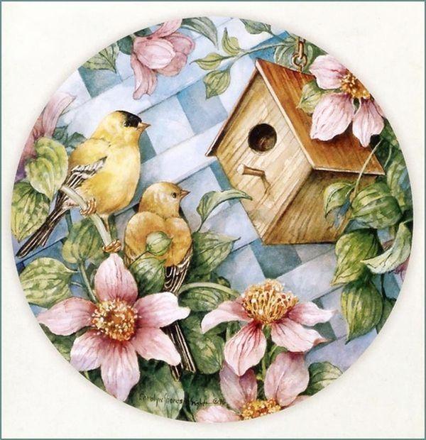 Casa de pájaros 11