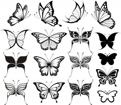 I need a good butterfly to go with paramore quote for rib tatty.