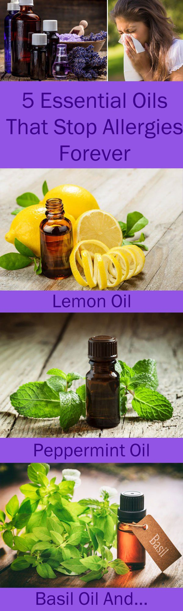 Allergies are often too painful, unpleasant, and uncomfortable, but instead of using various medications, you should try essential oils. These oils soothe the inflammation, boost the immune system, and clear the blocked sinuses. The following 5 essential oils are the best you can use in the case of allergies: Lavender Oil This oil has potentContinue Reading