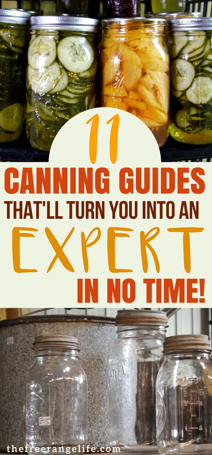 Learn everything about how to can vegetables and fruits from your garden. Food Preservation | Canning Guides | Pressure Canning |