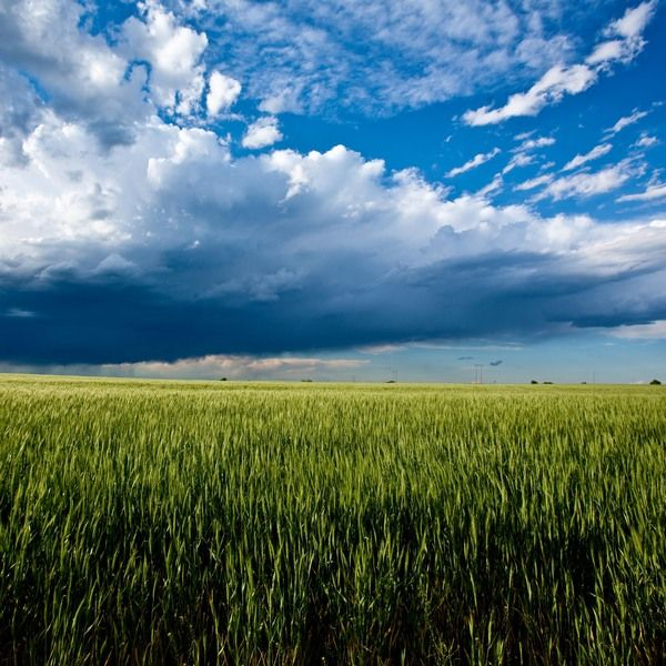 Storm clouds over the Oklahoma prairie.   As per source: Oklahoma! by Mike Klemme, (near Carmen, OK): Clouds Rainbows, Favorite Places, Oklahoma, Clouds Awe Inspiring, Storm Clouds, Nature Clouds, Favorite Pictures, Landscape Scenery