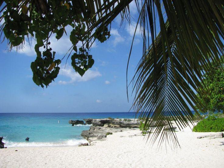 cayman islands singles scene