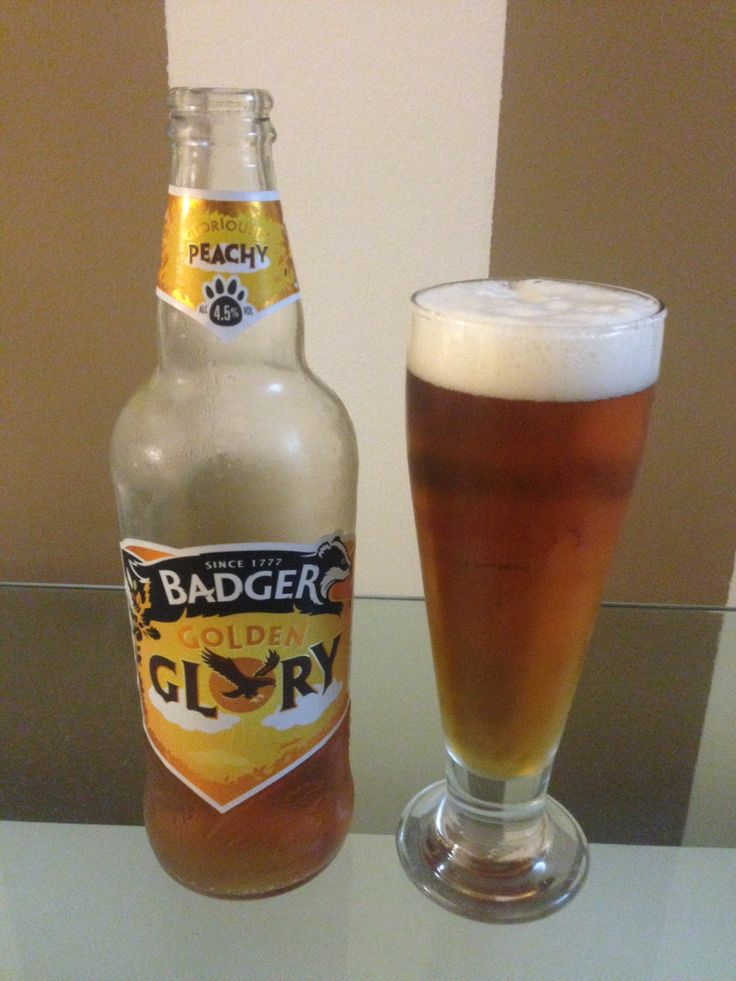 Badger Golden Glory, Inglaterra - Cerveja âmbar com notas de pêssego com sabor muito peculiar #badgers #goldenglory #beersoftheworld #cervejasdomundo #beer #cerveja #âmbar #bronzebeer #ruiva