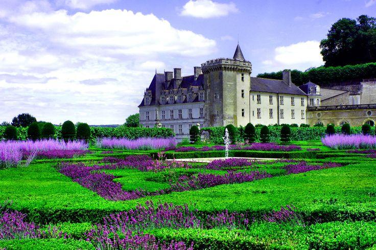 Piękne kolorowe ogrody promieniujące różnymi barwami poprzez cały rok.