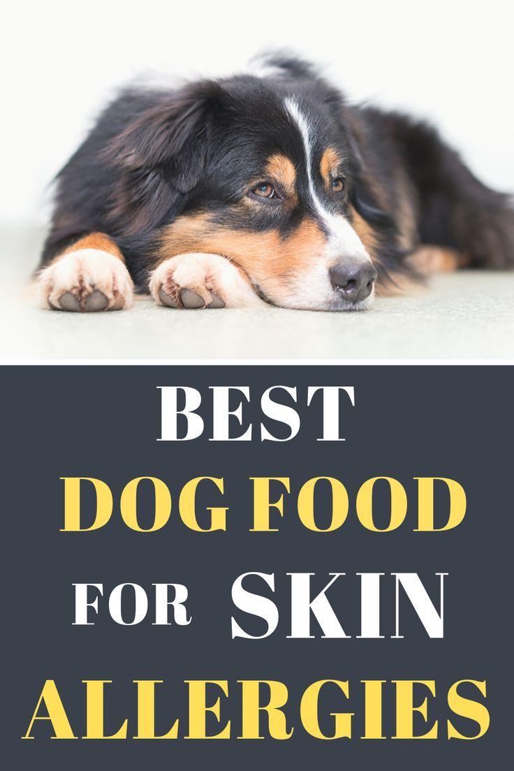Pin On Dog Skin Allergy Remedies