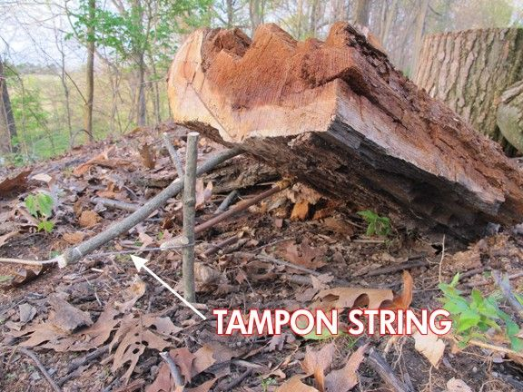 Tampon Survival Use: 10 Ways to Multipurpose a Tampon in a ...
