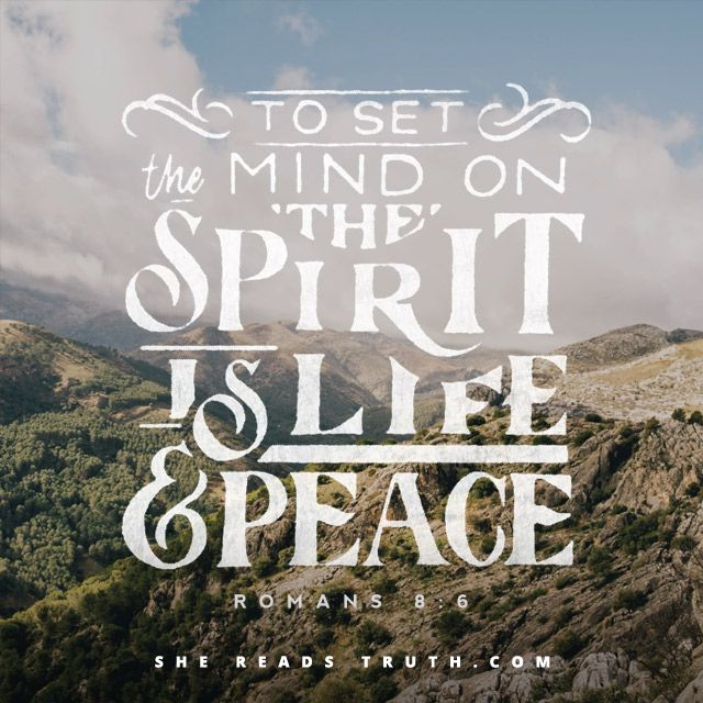 Day 13 of the Galatians reading plan from She Reads Truth   Grace Day Join us at SheReadsTruth.com or on the SRT app!