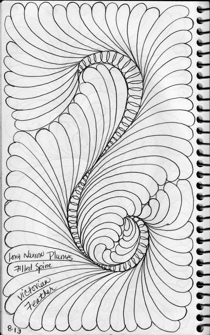 LuAnn Kessi: Feathers......from my Sketch Book
