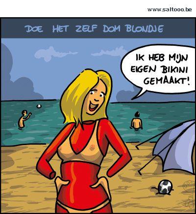 Thema van de cartoon op deze pagina: Een doe het zelf dom blondje maakt haar…