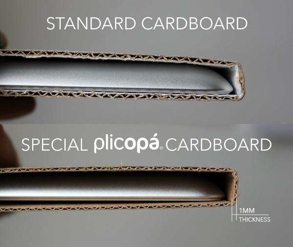 plicopa_specialpaper