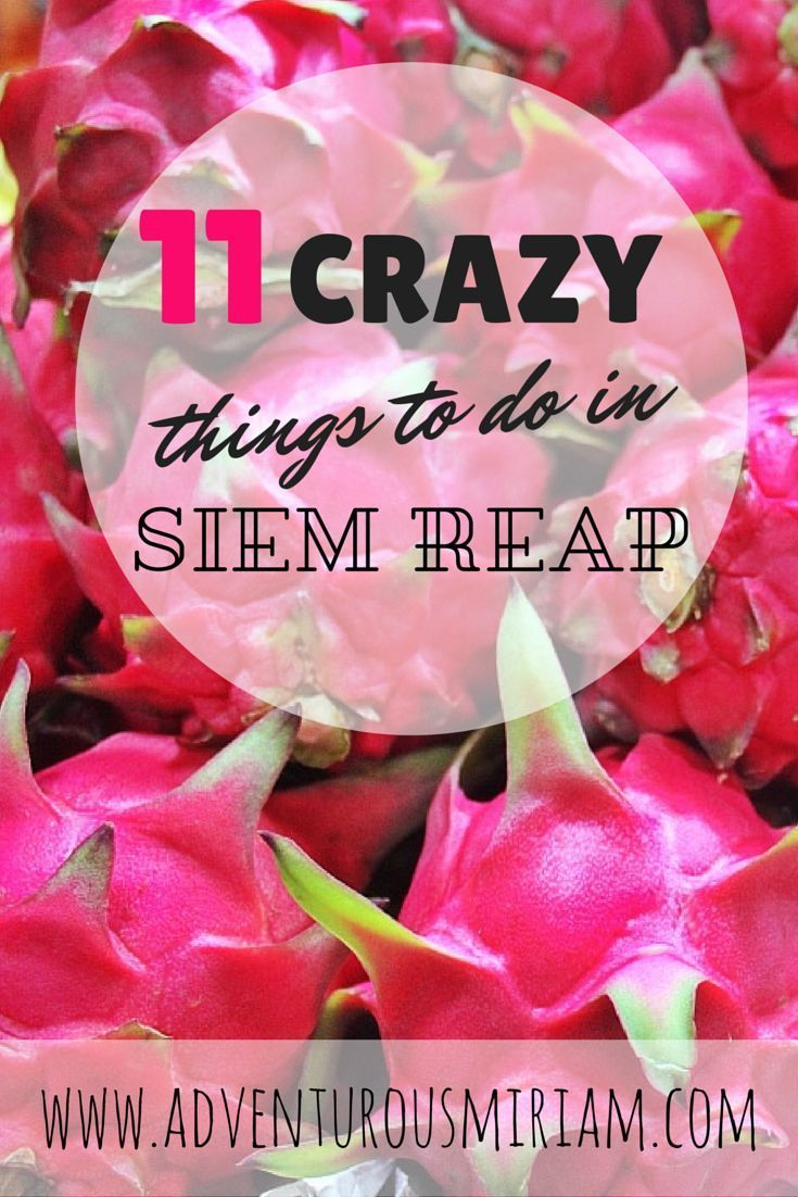 11 crazy things to do in Siem Reap #cambodia