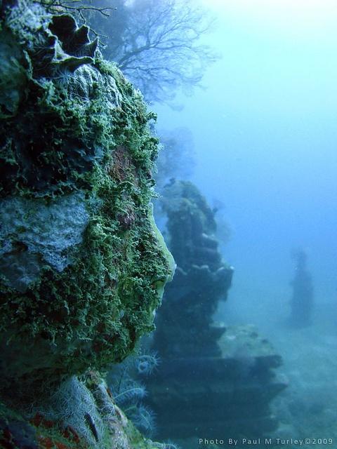 Best 25 Underwater Ruins Ideas On Pinterest Underwater Underwater City And Underwater Shipwreck