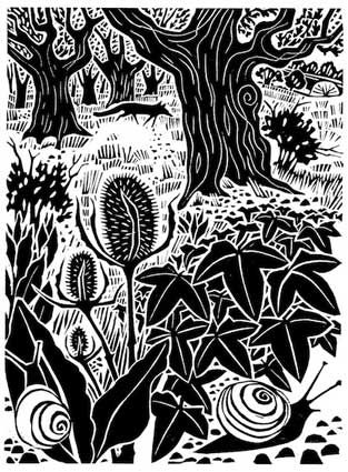 Carry Akroyd - Painter & Printmaker - Atrticles & Publications. Linocut.