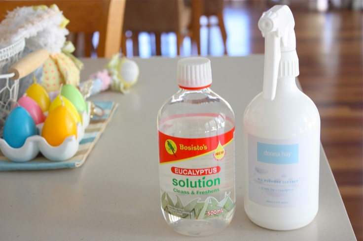 Going to have to try this (natural eucalyptus all-purpose cleaner)