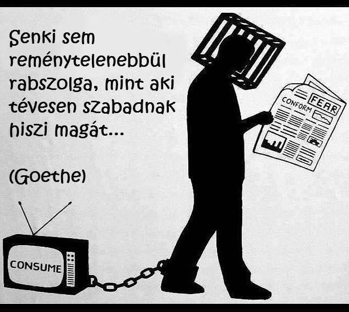 Goethe idézete a szabadság gondolatáról. A kép forrása: Anonymous Operation Hungary # Facebook