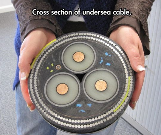 Cross section of an undersea cable