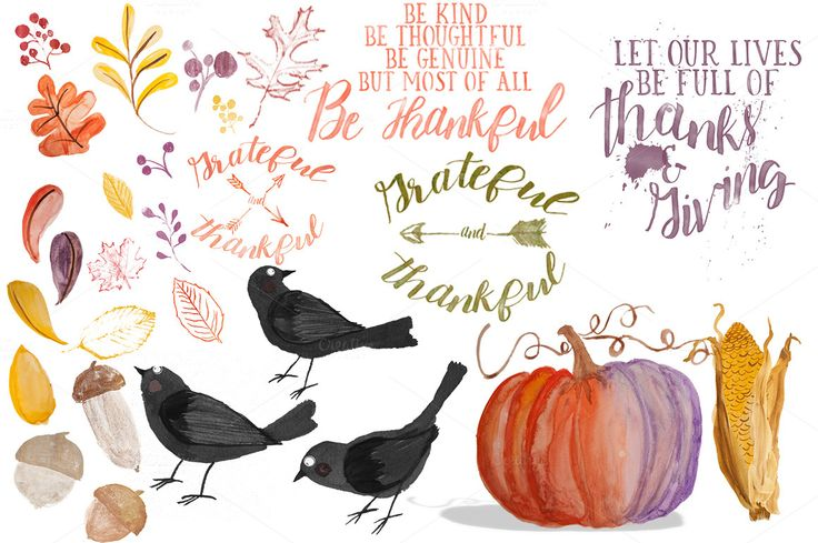 26 Watercolor Thanksgiving Graphics by Amy J. Coe on @creativemarket