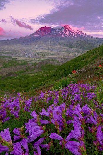 Sunset at Mount Saint Helens, Washington