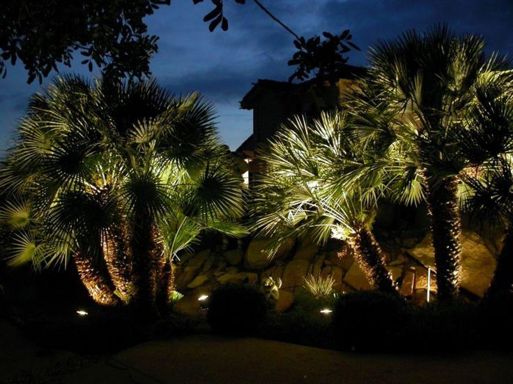 palmeras iluminadas