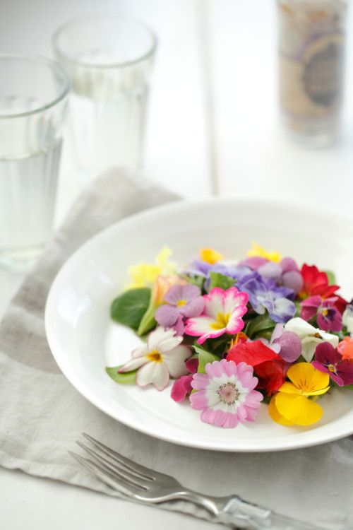 Spring salad of edible flower