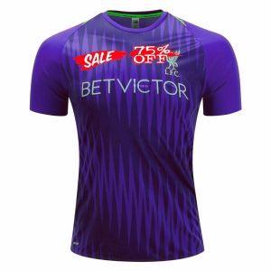 ffeca2d60e1 2018-19 Cheap Pre-Match Jersey Liverpool Purple Replica Training Shirt   CFC842