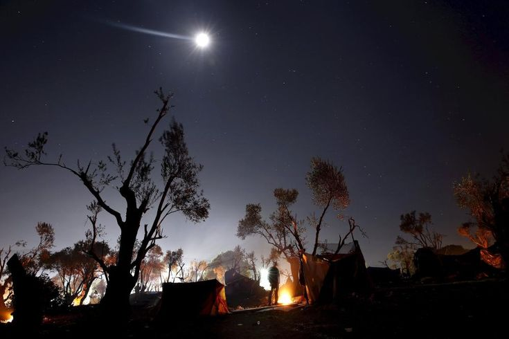Guardian photographer of the year 2015: Yannis Behrakis | Art and design | The Guardian