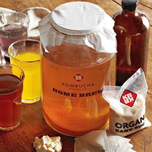 Kombucha Brooklyn Kit: Kombucha Kits, Homebrewing Kombucha, Flavored Kombucha, Homemade Kombucha, Kombucha Brooklyn, Healthy Eating, Williamssonoma, Brooklyn Kits, Diy Gifts