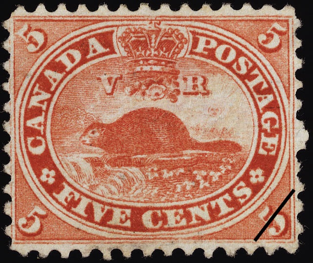 The Great Canadian Beaver