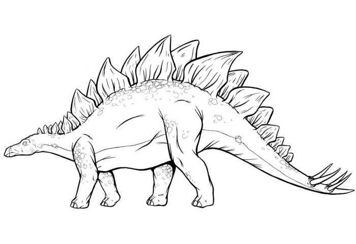 - Stegosaurus Dinosaur Coloring Page In 2020 Dinosaur Coloring Pages,  Dinosaur Coloring, Dinosaur Coloring Sheets