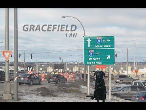 Gracefield - Némo Citoyen Labrador Vallée de la Gatineau