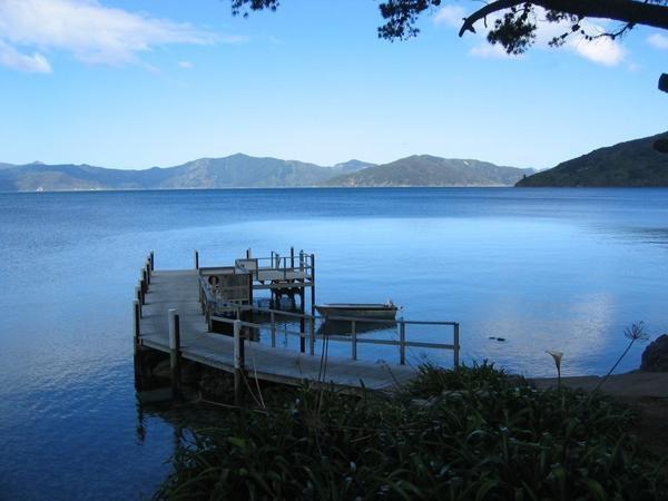 Marlborough Sounds - Resolution Bay NZ