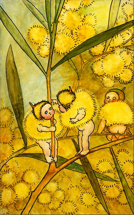 "Title	Painting. ""Wattle Babies"". Babies Dressed in Wattle Caps and Coats, by May Gibbs. Exhibit only. [watercolour painting of the ""Wattle Babies""]"