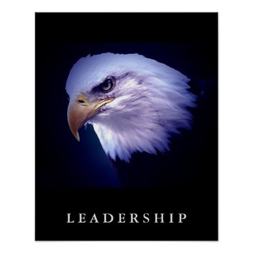 Bald Eagle Head Motivational Leadership Art Poster