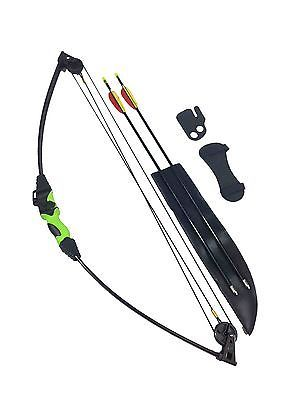 Archery pack #wildcat kids #junior #compound bow and arrow fun garden set kit 12l,  View more on the LINK: http://www.zeppy.io/product/gb/2/252115237212/
