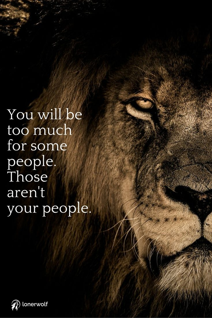 12 Signs You Ve Met Someone From Your Soul Group Lion Quotes