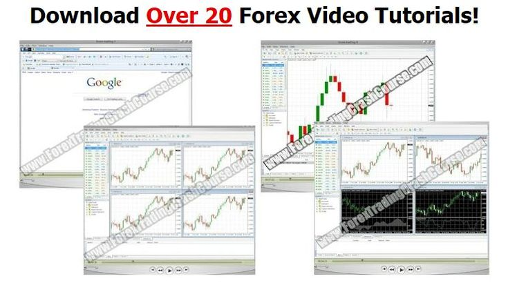Daily trading system forex course