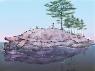 The Haudenosaunee Creation Story   Oneida Indian Nation   Creation Story