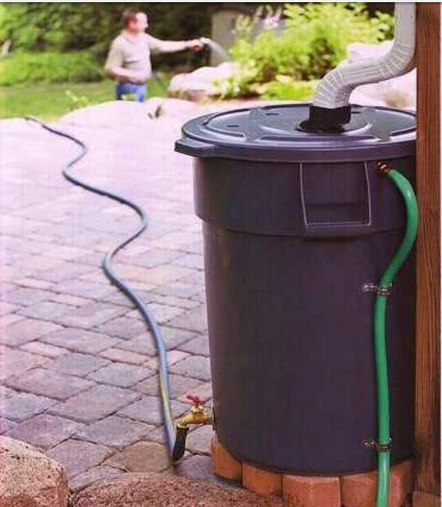 Gardening with gutter rain drainage!