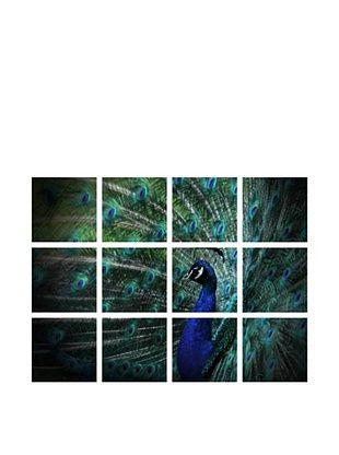 -14,850% OFF Art Addiction Acrylic Printed Peacock, Polyptych