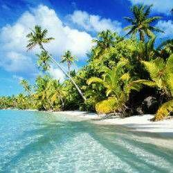 Oferta de viaje a Costa Rica Mágica con Playa de Guanacaste 10 noches Circuito de 12 días por Costa Rica visitando San José, el Parque Nacional Tortuguero, el Volcán Arenal, Monteverde y las playas de Guanacaste.