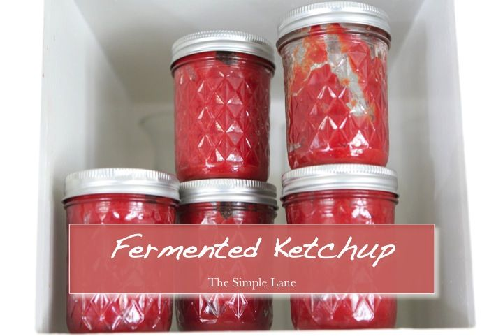 Fermented Ketchup, www.thesimplelane.com