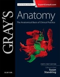 8 best medical books free download images on pinterest human drowledge grays anatomy book fandeluxe Images