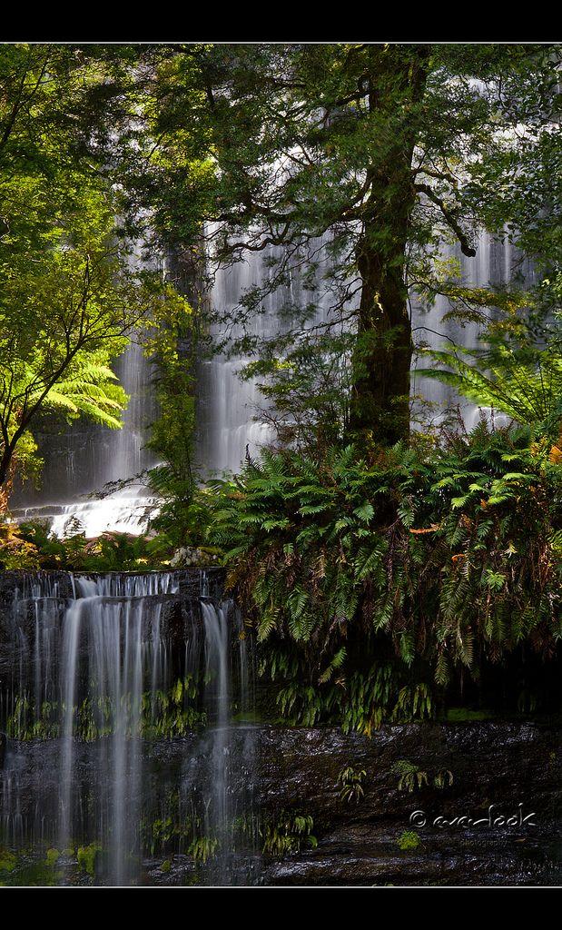 Russell Falls,  Mount Field National Park, central highlands of Tasmania, Australia