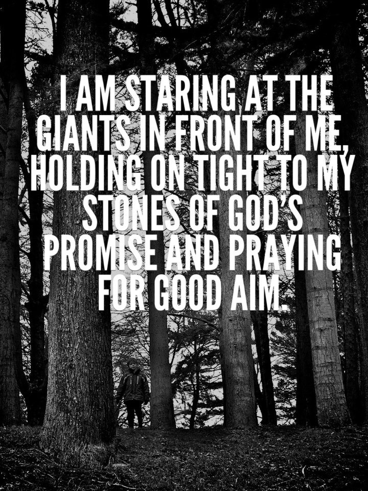 I am staring at the giants in front of me, holding on tight to my stones of God's promise and praying for good aim. #Christian #quote